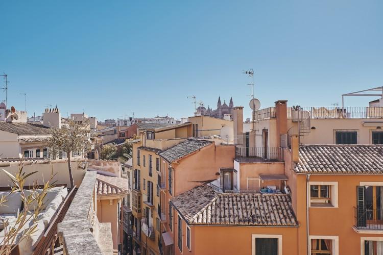 Penthouse in Palma available on Nano Mundo today; image 2