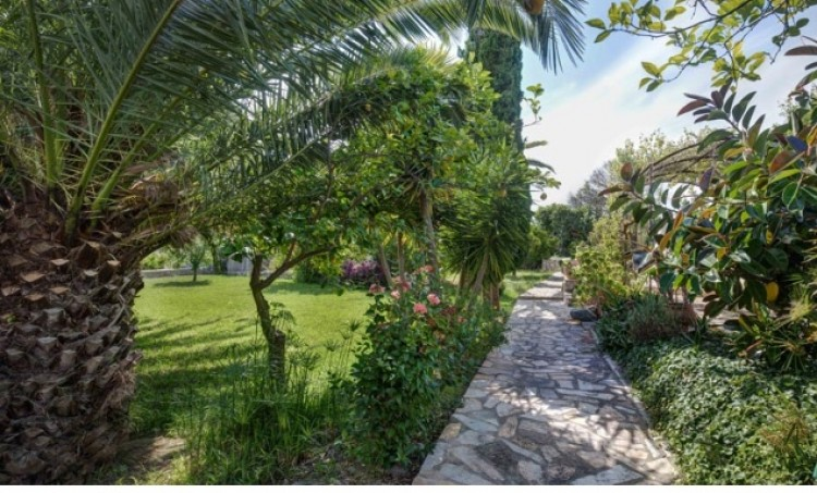Country House, Finca in Soller available on Nano Mundo today; image 6