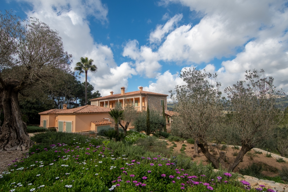 Country House, Finca in Port de Andratx available on Nano Mundo today; image 4