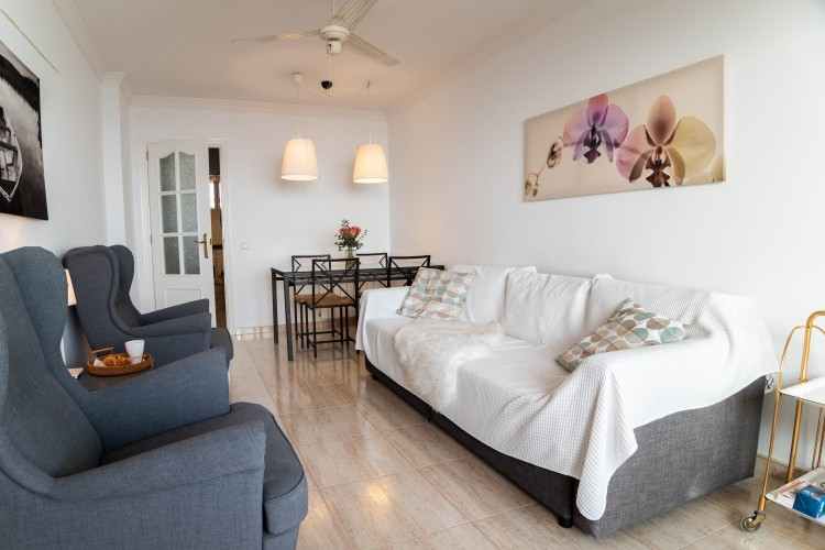 Apartment in San Agustin available on Nano Mundo today; image 6