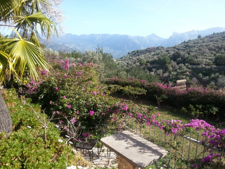 Country House, Finca in Soller available on Nano Mundo today; image 4