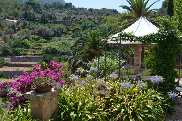 Country House, Finca in Soller available on Nano Mundo today; image 5